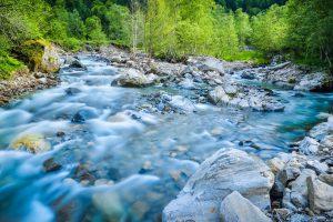 Die reine Natur der Auvergne mit ihren ausgedehnten Wäldern und Gewässern lässt die Seele Entspannung finden (#1)