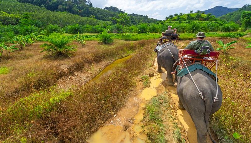 In den Nationalparks gibt es viel zu entdecken. Wasserfälle, natürliche Pools, Höhlen und abgelegene Buchten sind nur ein paar der Highlights. Auf Aussichtspunkten hat man einen Weitblick über Khao Lak und seine einzigartige Natur. Für den Urlaub in Khao Lak buchen smarte Urlauber auch ein paar Landausflüge gleich mit.(#03)