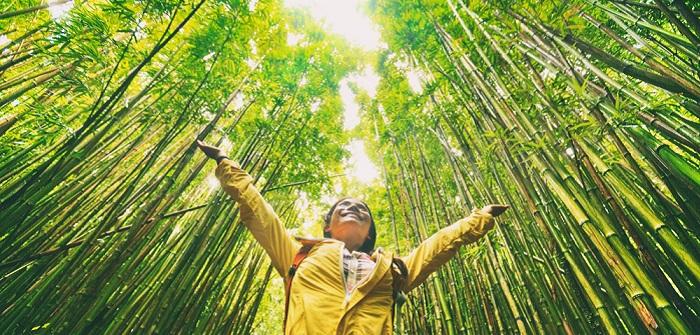 Sanfter Tourismus: die Vorteile einfach erklärt, gute Beispiele aus Europa ( Foto: Shutterstock-Maridav)